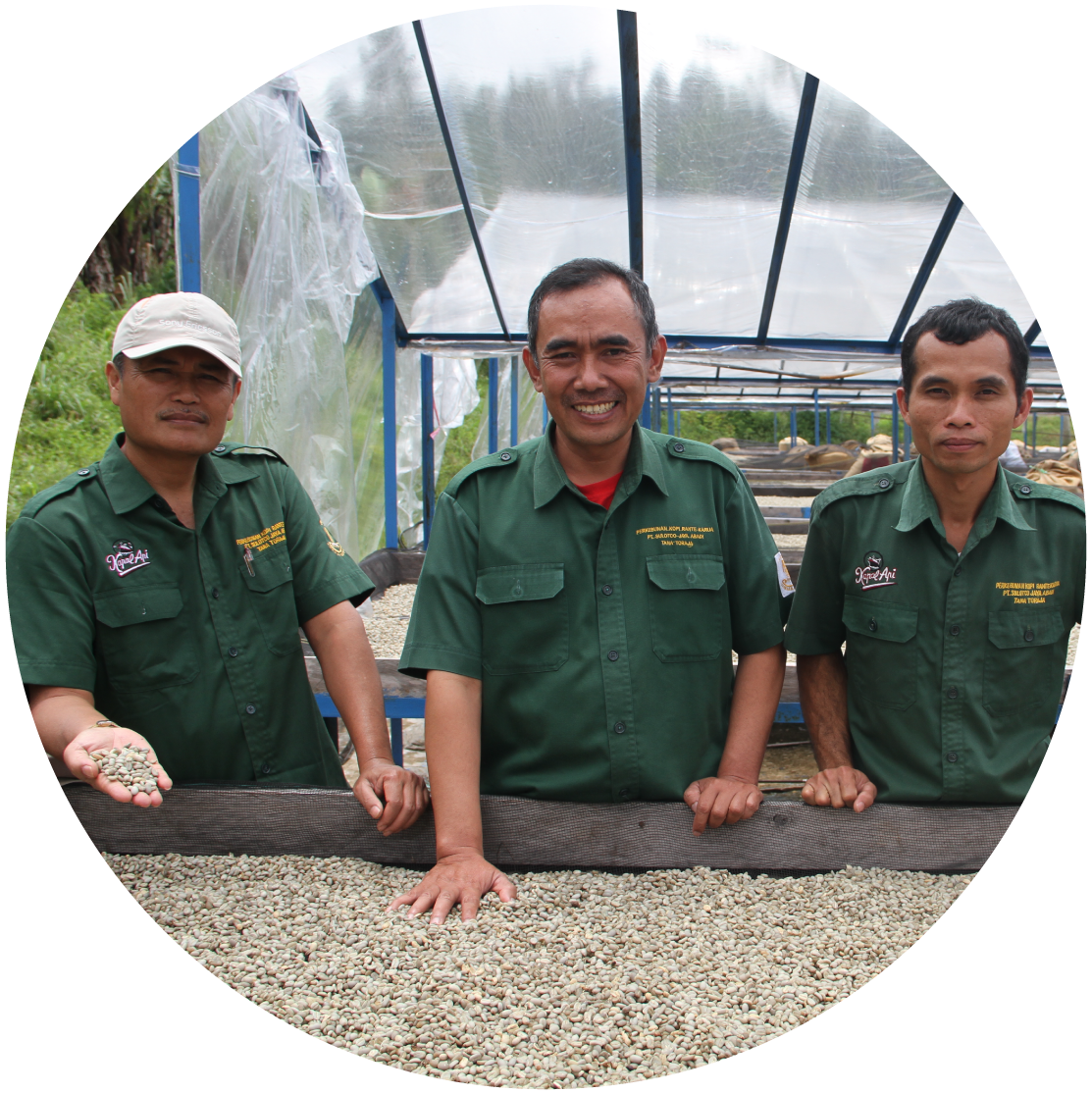 We plant, grow, harvest and process the beans with one thing in mind: Quality